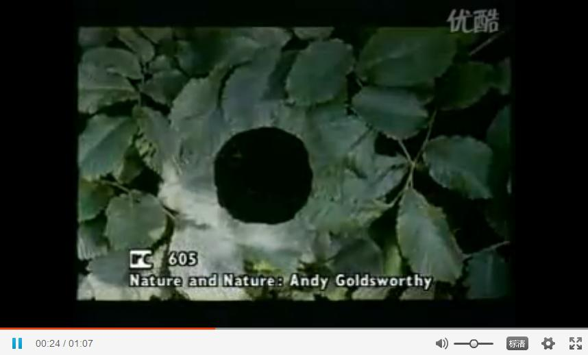 Andy Goldsworthy 自然雕塑3